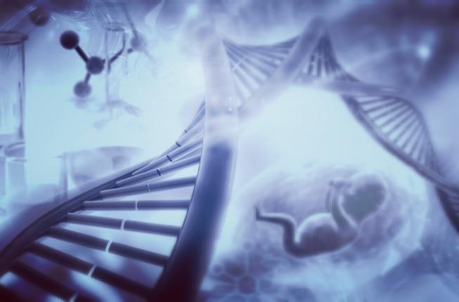 Collegamento a Corso di Alta Formazione in GENETICA RIPRODUTTIVA e PRENATALE